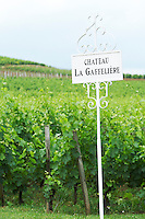 chateau la gaffeliere saint emilion bordeaux france