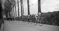 Kuurne-Brussel-Kuurne 2012<br /> Lotto-Belisol team effort approaching Nokere Berg