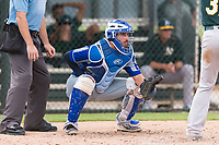Team Italy catcher Mario Trinci (6) waits to receive a pitch during an exhibition game against the Oakland Athletics at Lew Wolff Training Complex on October 3, 2018 in Mesa, Arizona. (Zachary Lucy/Four Seam Images)