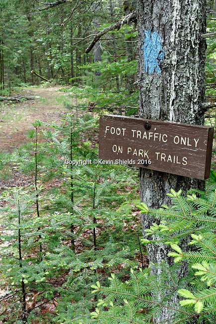 Trail sign in Camden Hills State Park, Maine, USA.