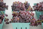 119th Tontitown Grape Festival