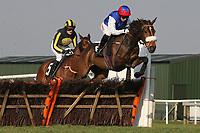 Race winner Flite ridden by Noel Fehily leads the field in the Follow Plumpton Racecourse On Facebook Mares Handicap Hurdle