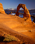 Arches National Park, UT<br /> Sunset light on Delicate Arch with distant snow capped LaSal Mountains