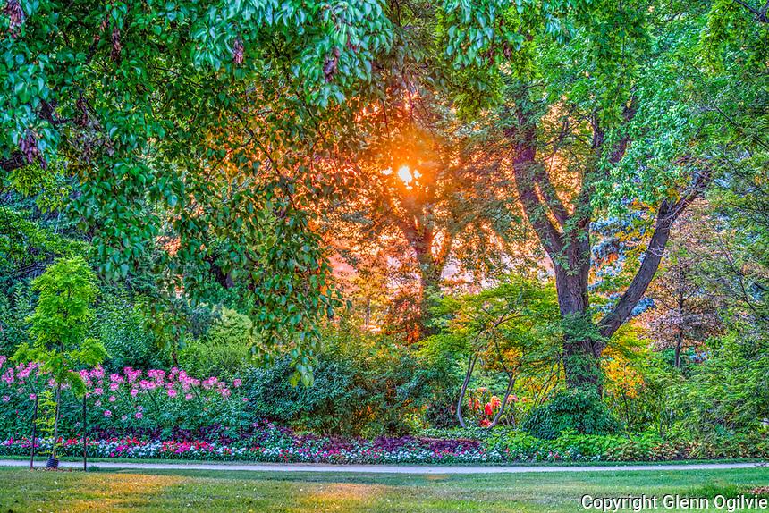 Sun setting on Germain Park.