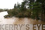 Trees fallen into river at Listowel Bridge.