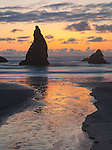 Bandon State Park, OR: Sunset reflections in a small stream with silhouetted seastacks at Bandon Beach