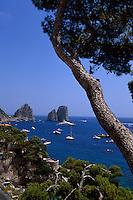 Blick von Marina Piccola auf Faraglioni-Felsen und Sarazenenturm, Capri, Italien