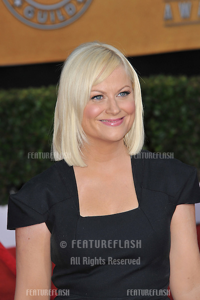 Amy Poehler at the 17th Annual Screen Actors Guild Awards at the Shrine Auditorium..January 30, 2011  Los Angeles, CA.Picture: Paul Smith / Featureflash