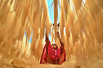 Rice noodle drying by Abdul Momin