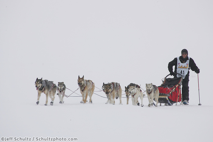 Paul Gebhart on the trail nearing Nome in foggy conditions.    End of the  2005 Iditarod Trail Sled Dog Race.