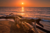 Driftwood on Lake Erie shoreline at sunrise<br />