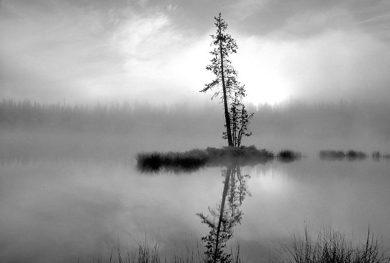 Sunrise and fog on Scott Lake, Oregon.