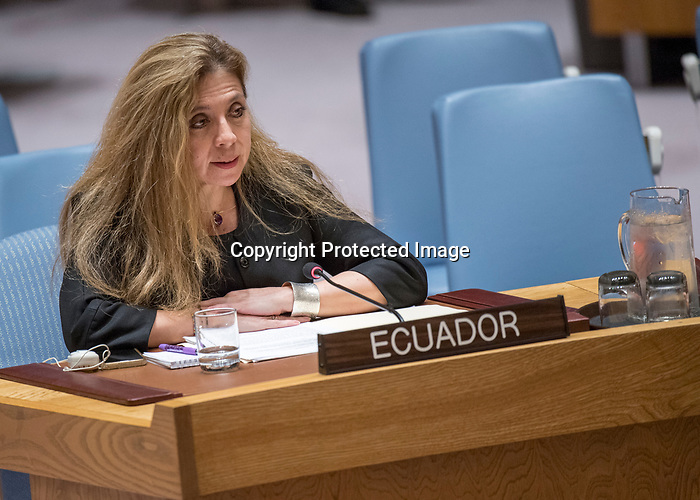 Security Council meeting<br /> Women and peace and security<br /> Realizing the promise of the women and peace and security agenda: ensuring its full implementation, including the participation of women<br /> Report of the Secretary-General on women and peace and security (S/2017/861)<br /> Letter dated 20 October 2017 from the Chargé d' affaires a.i. of the Permanent Mission of France to the United Nations addressed to the Secretary-General (S/2017/889)