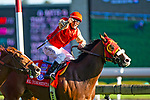 TORONT,CANADA-SEP 14: El Tormenta #1,ridden by Eurico da Silva,wins the Woodbine Mile at Woodbine Race Track on September 14,2019 in Toronto,Ontario,Canada. Kaz Ishida/Eclipse Sportswire/CSM
