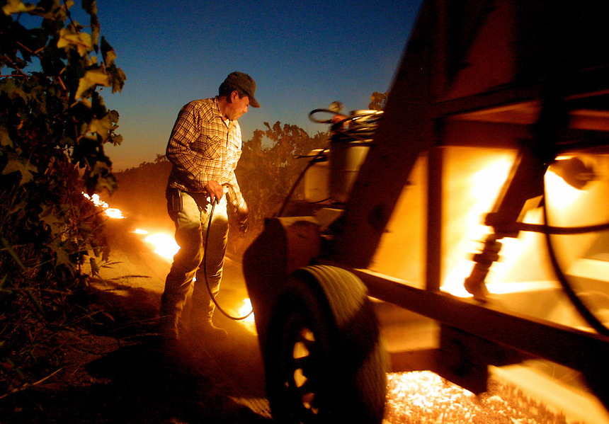 A worker follows behind a machine designed to pick up raisins, torching the long sheet of paper on which the crops dried in the vineyard row. Farmers in the San Joaquin Valley are replacing day laborers with harvesting machines to cut costs.