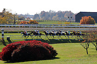 Upperline and James Graham win the 21st running of the Rood and Riddle Dowager (Listed) $125,000 at Keeneland racecourse.  October 21, 2012.