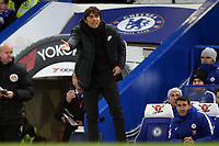Chelsea manager Antonio Conte during Chelsea vs Leicester City, Premier League Football at Stamford Bridge on 13th January 2018