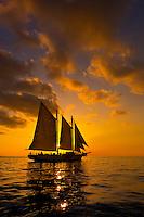 The schooner Western Union at sunset, off Key West, Florida Keys, Florida USA