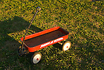 Red Radio Flyer wagon on green grass