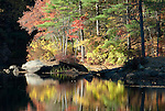 A splash of fall color relected in a lake in Harold Parker State Forest in Andover, Massachusetts