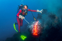 scuba diver, Bud Turpin, sampling pillow lava erupting from underwater lava tube at ocean entry of Kilauea Volcano, Big Island, Hawaii, USA, Pacific Ocean, MR