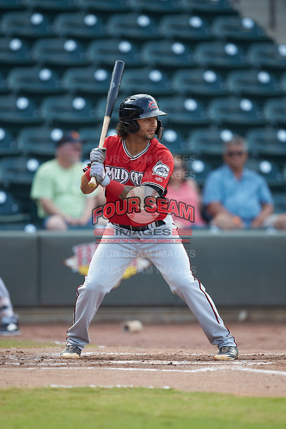 Eddie Silva (28) of the Carolina Mudcats at bat against the Winston-Salem Dash at BB&T Ballpark on June 1, 2019 in Winston-Salem, North Carolina. The Mudcats defeated the Dash 6-3 in game one of a double header. (Brian Westerholt/Four Seam Images)