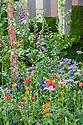Bradstone Panache Garden, Caroline E. Butler, RHS Chelsea Flower Show 2012. Plants include the tree Black Birch (Betula nigra), Geum 'Princess Juliana', Aquilegia and Digitalis.