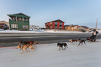 Becca Moore runs down Front Street as residents cheer her on a mile or so from the finsih line in Nome on Saturday March 21, 2015 during Iditarod 2015.  <br /> <br /> (C) Jeff Schultz/SchultzPhoto.com - ALL RIGHTS RESERVED<br />  DUPLICATION  PROHIBITED  WITHOUT  PERMISSION