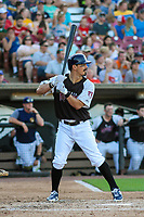 Milwaukee Brewers shortstop Tyler Saladino (17) at bat during a rehab outing with the Wisconsin Timber Rattlers in a Midwest League game against the Clinton LumberKings on June 29, 2018 at Fox Cities Stadium in Appleton, Wisconsin. Clinton defeated Wisconsin 9-7. (Brad Krause/Four Seam Images)