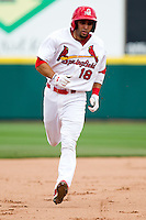 Alex Castellanos (18) of the Springfield Cardinals rounds the bases after hitting one of two home runs during a game against the Midland RockHounds on April 19, 2011 at Hammons Field in Springfield, Missouri.  Photo By David Welker/Four Seam Images