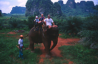 tourists enjoying an Asian Elephant trek through the jungle. Krabi Province, Southern Thailand.