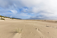 Windlblown sand marks dunes in dramatic seascape of Pacific Ocean beach at Nehalem Beach State Park, Oregon State Parks.  Astoria, Oregon
