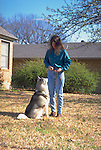 Siberian Huskys in the yard<br /> <br /> Shopping cart has 3 Tabs:<br /> <br /> 1) Rights-Managed downloads for Commercial Use<br /> <br /> 2) Print sizes from wallet to 20x30<br /> <br /> 3) Merchandise items like T-shirts and refrigerator magnets