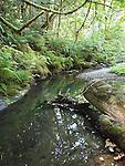 Gazos Creek
