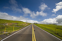 Green pastures surrounding Kohala Mountain Road on the Big Island of Hawaii