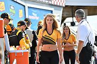 IMSA WeatherTech SportsCar Championship<br /> Sahlen's Six Hours of the Glen<br /> Watkins Glen International, Watkins Glen, NY USA<br /> Sunday 2 July 2017<br /> Conti Girls<br /> World Copyright: Richard Dole/LAT Images<br /> ref: Digital Image RD_WGI_17_586