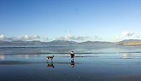 A little girl plays with her dog in glorious sunshine on Rossbeigh Strand in County Kerry at the weekend.<br /> Picture by Sally MacMonagle