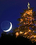 Crescent moon over Chrismas Tree Hill in Corte Madera, California.