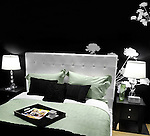 Stylish bedroom interior design in black white green colors
