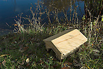 Frog or Toad Home, made from oak wood, at side of pond, for hibernating, overwintering, or sheltering, United Kingdom