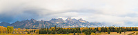 67545-09004 Fall color from Blacktail Ponds Overlook, Grand Teton National Park, WY