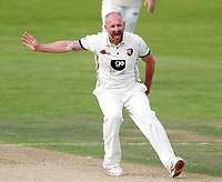 Darren Stevens of Kent appeals during the County Championship Division Two game between Kent and Northants at the St Lawrence ground, Canterbury, on Sept 4, 2018.