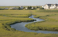 Salt Marsh meander; Summer, Spartina; Avalon, Cape May Co., NJ
