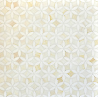 Fiona, a waterjet mosaic shown in Moonstone and Quartz jewel glass, is part of the Silk Road collection by Sara Baldwin for New Ravenna.