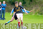 Kieran Courtney Behy Rovers Kevin O'Shea Castlemaine