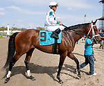 March 2010:  Battle Plan (9) and Javier Castellano after winning the New Orleans Handicap at the Fair Grounds in New Orleans, La.