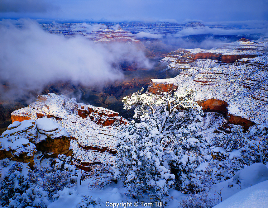 Morning Snow at the South Rim, Grand Canyon National Park, Arizona