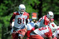 Jul 31, 2009; Flagstaff, AZ, USA; Arizona Cardinals wide receiver Anquan Boldin (81) during training camp on the campus of Northern Arizona University. Mandatory Credit: Mark J. Rebilas-