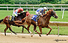 Yellowknife Joe winning at Delaware Park racetrack on 6/25/14