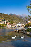 Italy, Piedmont, Omegna: small town at the Northern banks of Lake Orta   Italien, Piemont, Omegna: Kleinstadt am Nordende des Ortasees